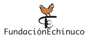 Logo Fundación Echinuco-01